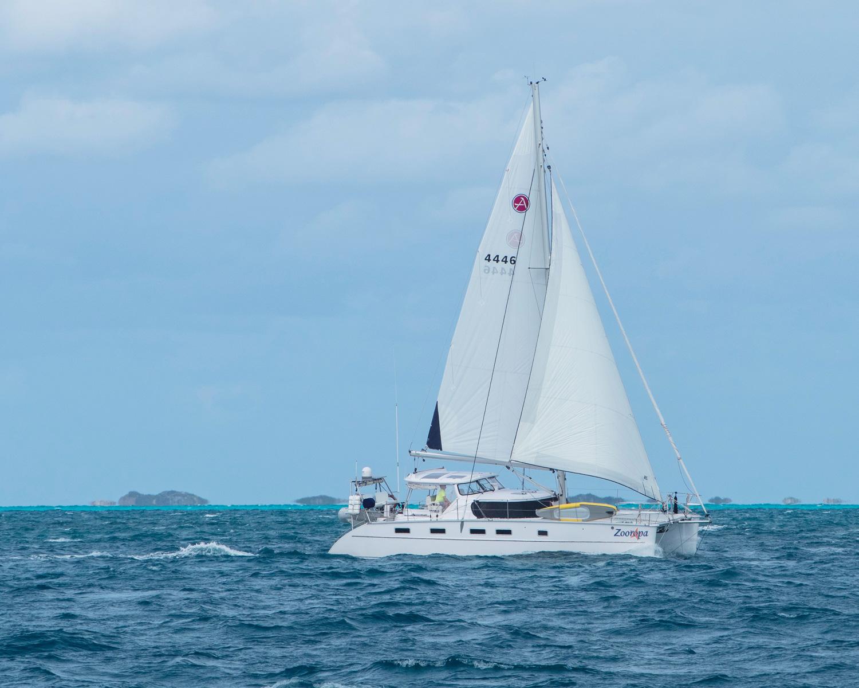 zooropa_sailing_catamaran